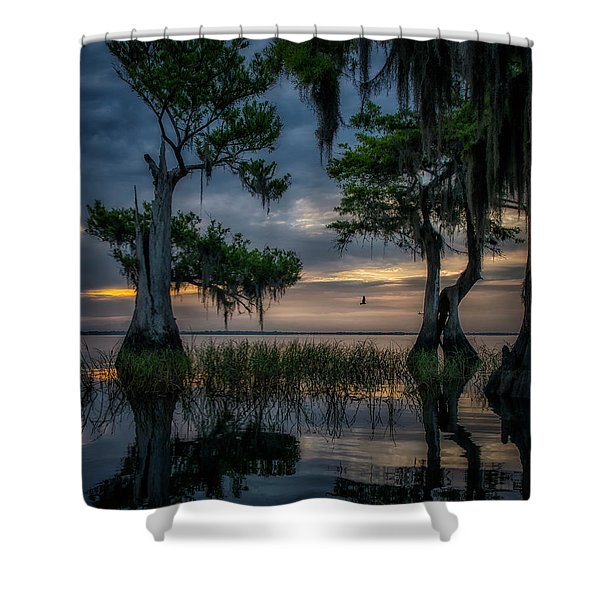 Wild Florida Shower Curtain