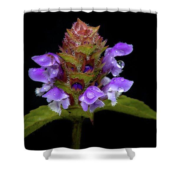 Wild Flower Portrait Shower Curtain
