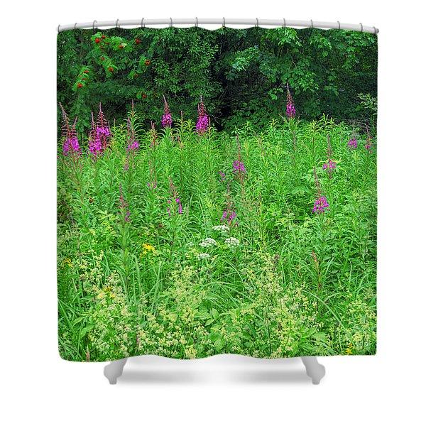 Wild Flowers And Shrubs In Vogelsberg Shower Curtain