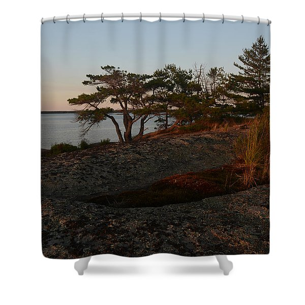 Wild Grass At Sunset - Georgian Bay Shower Curtain