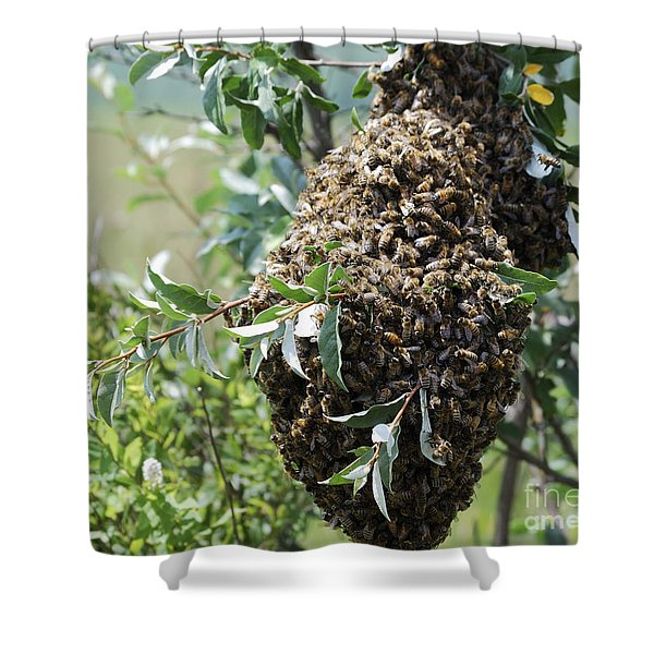 Wild Honey Bees Shower Curtain