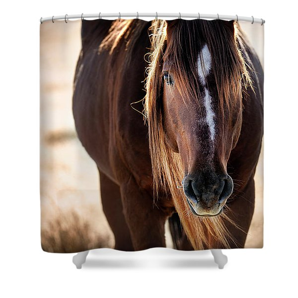 Wild Horse Watching Shower Curtain