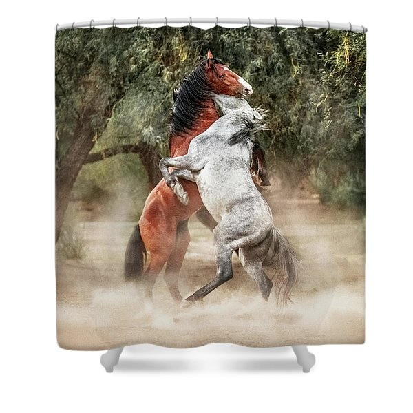 Wild Horses Rearing Up Play Fighting Shower Curtain
