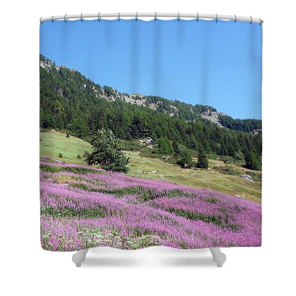 Wild Lavender Shower Curtain