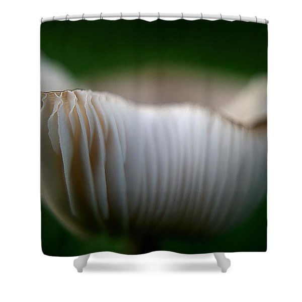 Wild Mushroom-2 Shower Curtain