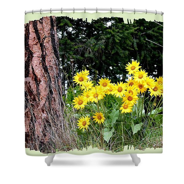 Wild Oyama Sunflowers Shower Curtain
