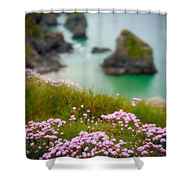 Wild Sea Pinks In Cornwall Shower Curtain