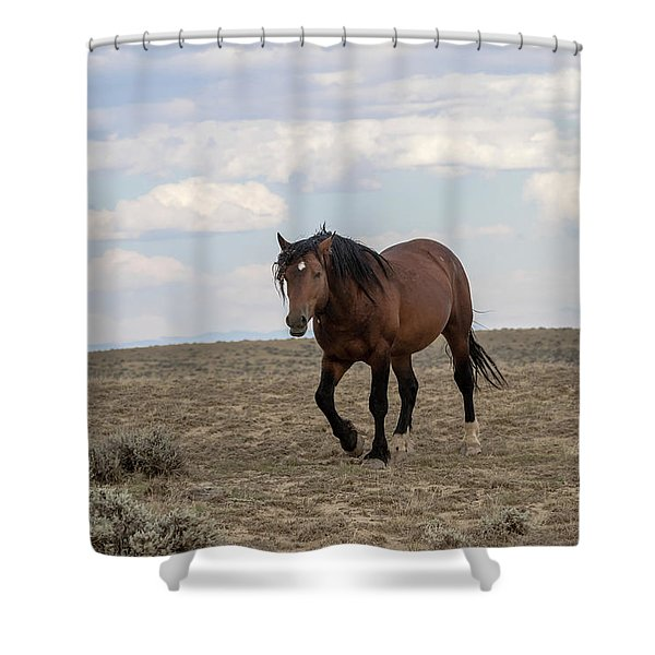 Shower Curtain featuring the photograph Wild Stallion by Ronnie and Frances Howard