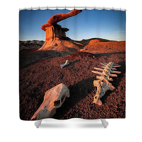 Wild Wild West Shower Curtain