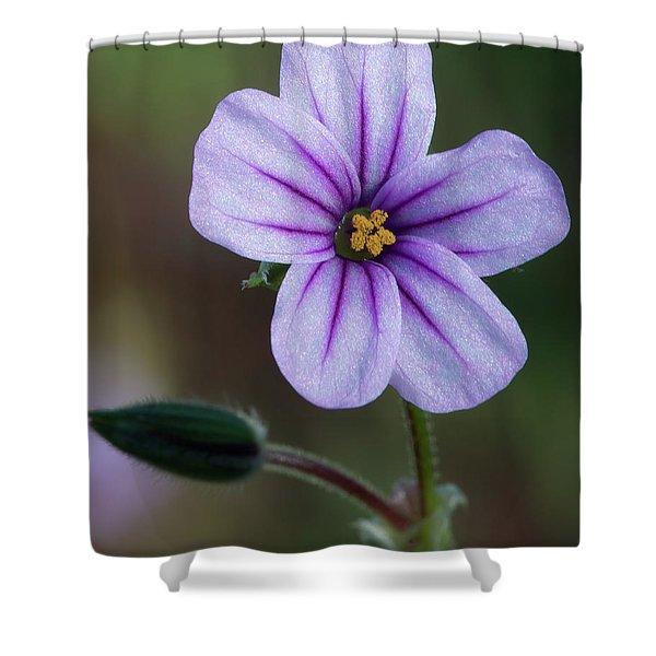 Wilderness Flower 3 Shower Curtain