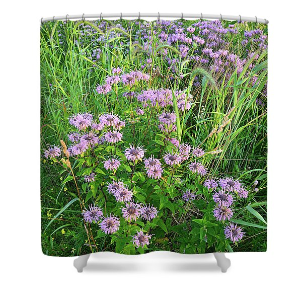 Wildflower Bouquet In Glacial Park Shower Curtain