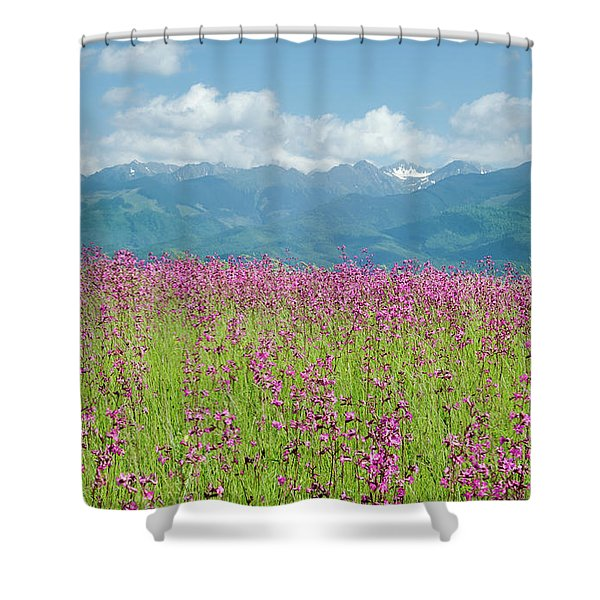 Wildflower Meadows And The Carpathian Mountains, Romania Shower Curtain