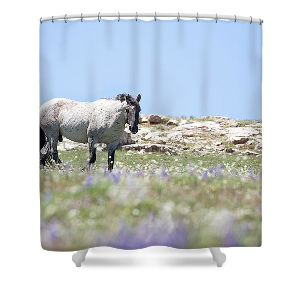 Wildflowers And Mustang Shower Curtain