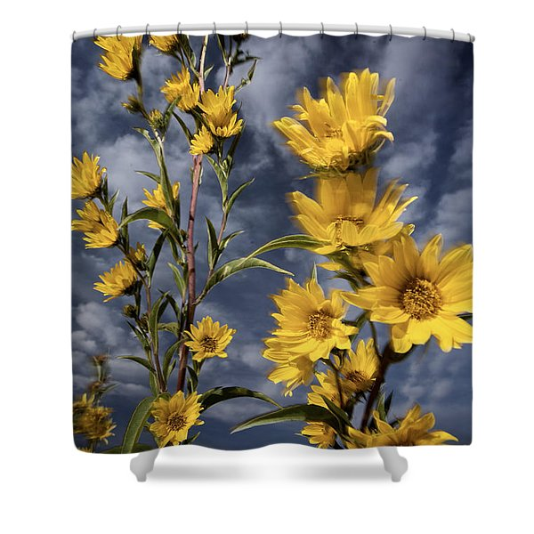 Wildflowers Blooming On The Kansas Shower Curtain