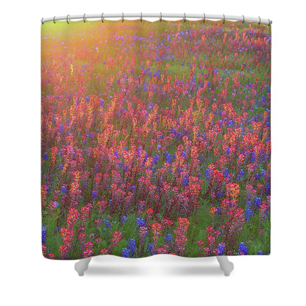 Wildflowers In Texas Shower Curtain