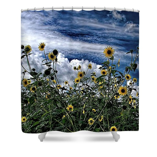 Wildflowers On The Brazos Shower Curtain