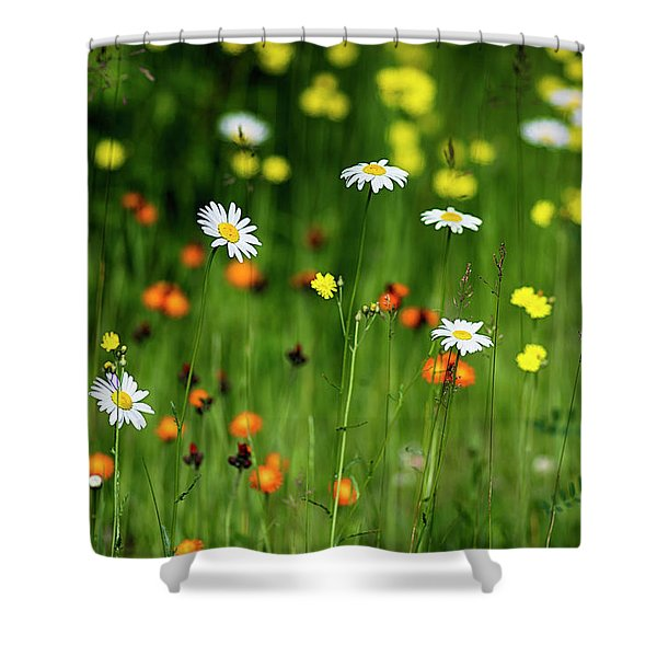 Wildflowers2 Shower Curtain