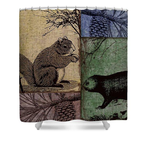 Wildlife Patchwork Squirrel Shower Curtain