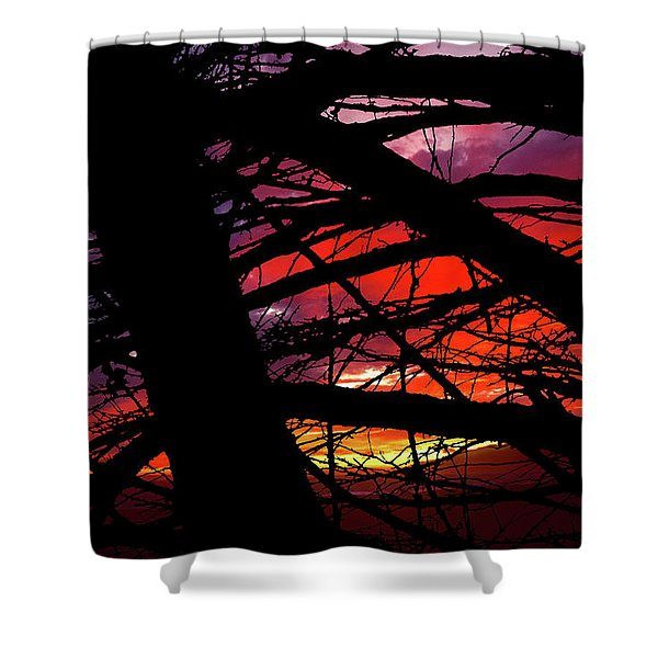 Wildlight Shower Curtain