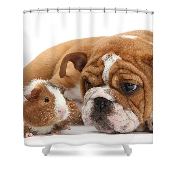 Will You Be My Friend? Shower Curtain