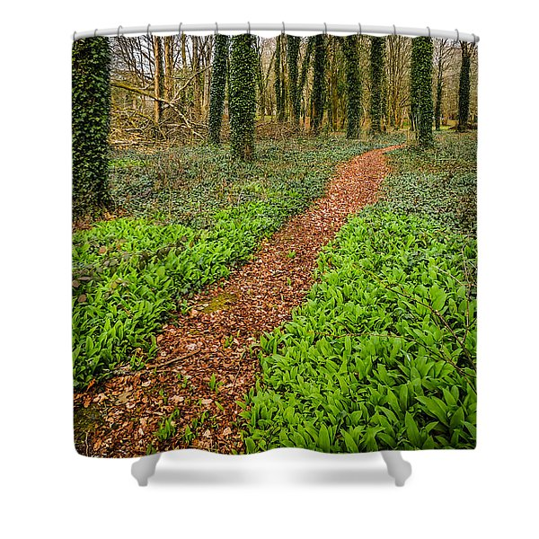 William Butler Yeats Woods Of Coole Park Shower Curtain