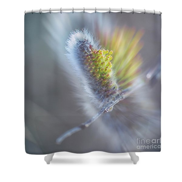 Willow Blossoms Shower Curtain