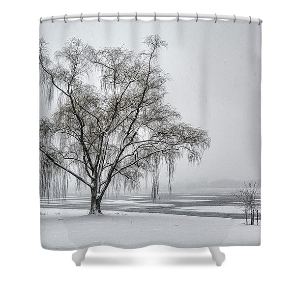 Willow In Blizzard Shower Curtain