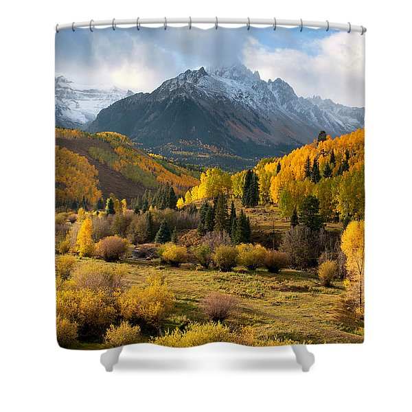 Willow Swamp Shower Curtain
