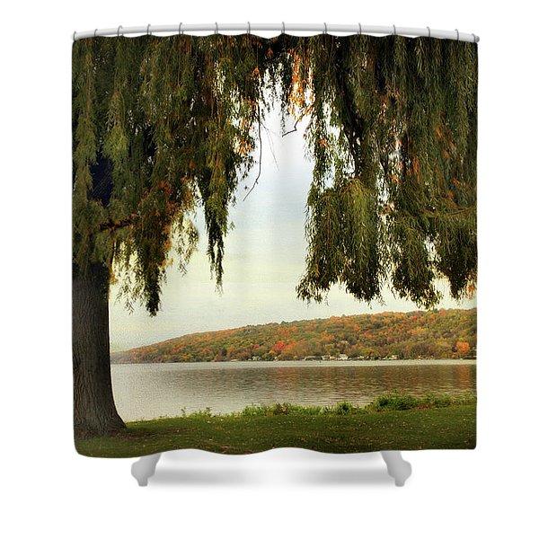 Willows Of Stewart Park Shower Curtain