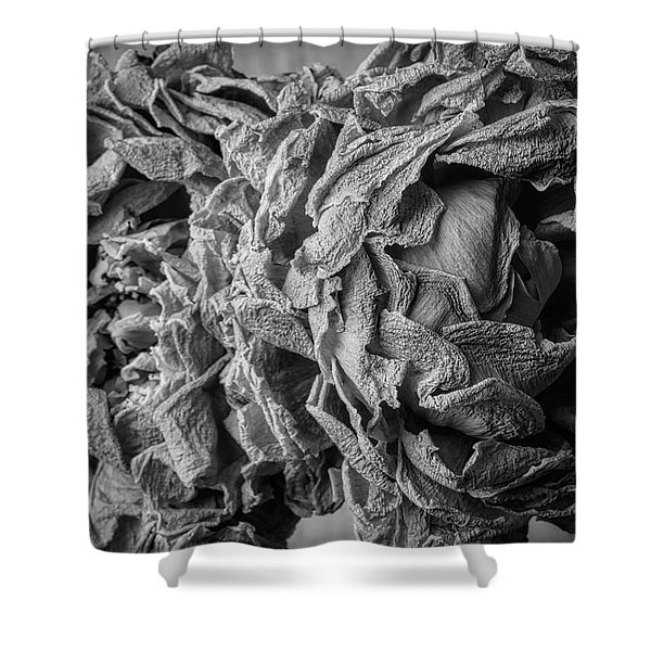 Wilted Peonies Shower Curtain
