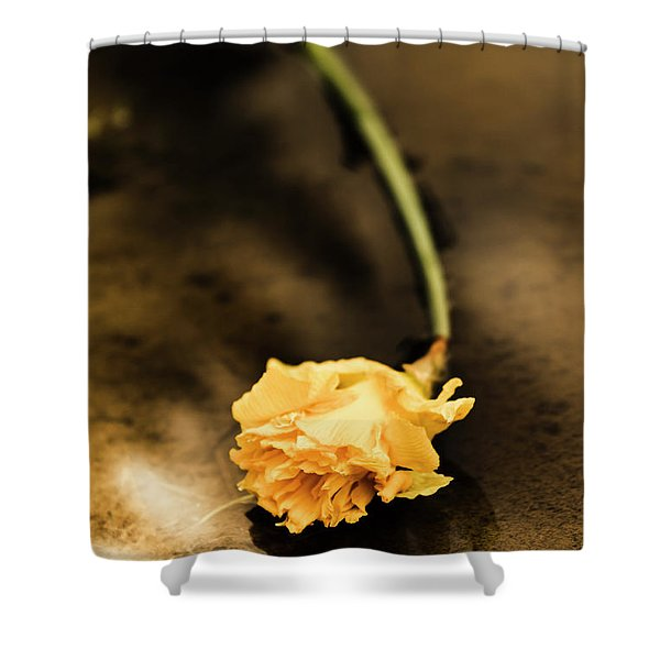 Wilting Puddle Flower Shower Curtain