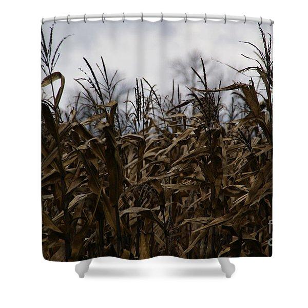 Wind Blown Shower Curtain