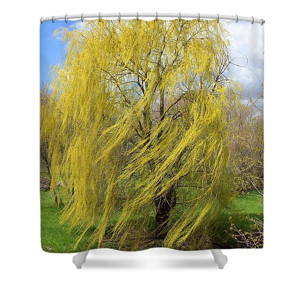 Wind In The Willow Shower Curtain