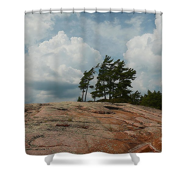 Wind Swept Trees On Rocks Shower Curtain