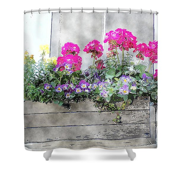 Window Box 5 Shower Curtain
