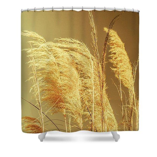 Windswept Autumn Brush Grass Shower Curtain