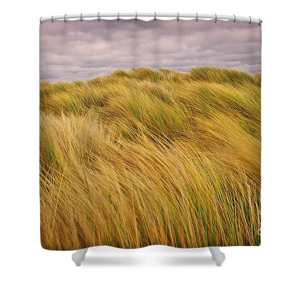 windswept Grasses Shower Curtain