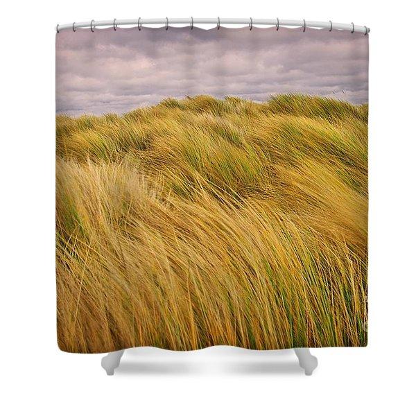 windswept Grasses Shower Curtain