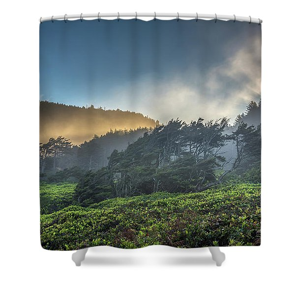 Windswept Trees On The Oregon Coast Shower Curtain