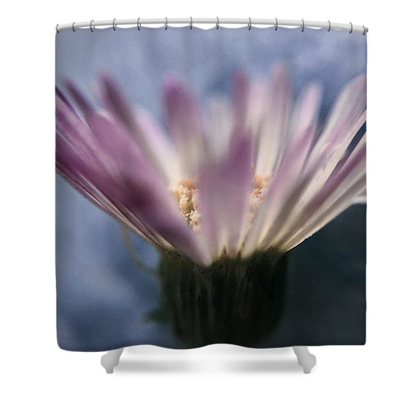 Wine In The Sky Shower Curtain