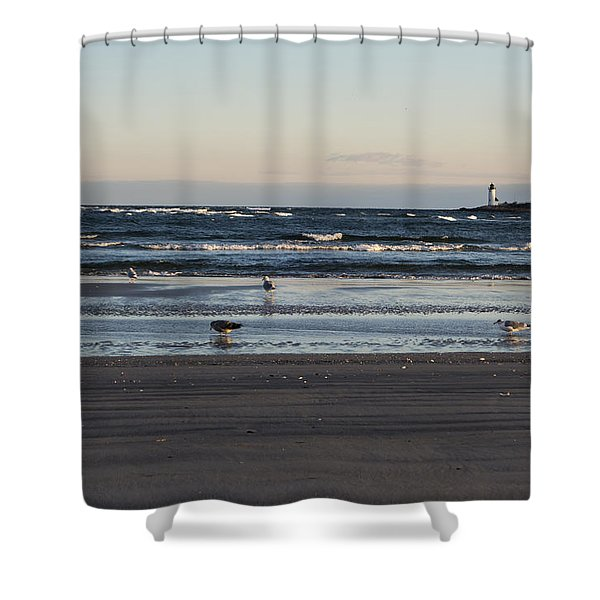 Wingaersheek Beach Seagulls At Sunrise Shower Curtain