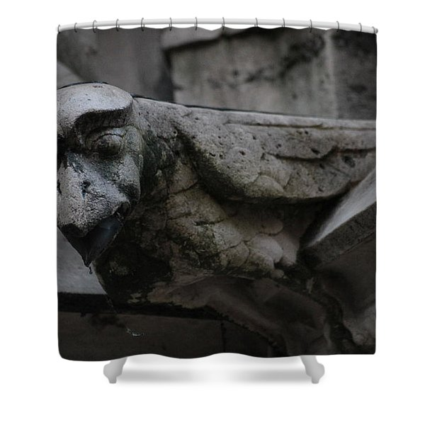 Winged Gargoyle Shower Curtain