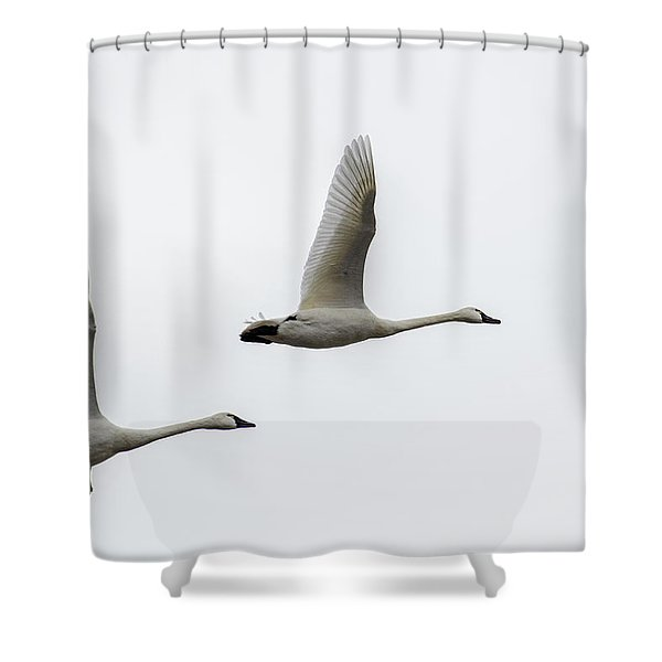 Winging Home Shower Curtain