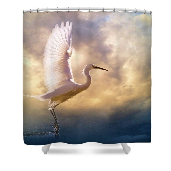 Wings Of Light Shower Curtain