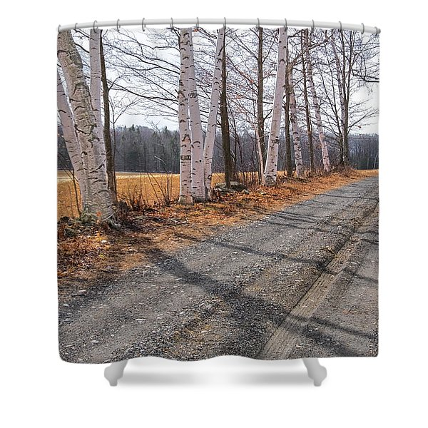 Shower Curtain featuring the photograph Winter Birches by Tom Singleton