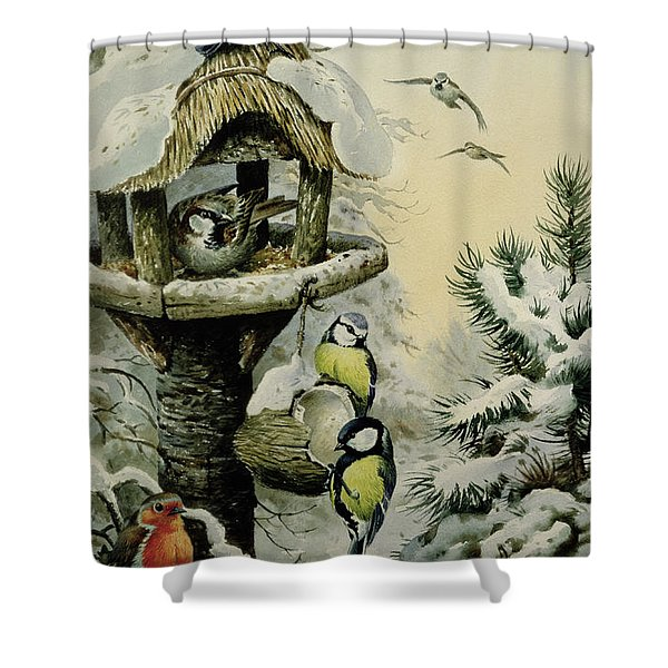 Winter Bird Table With Blue Tits Shower Curtain