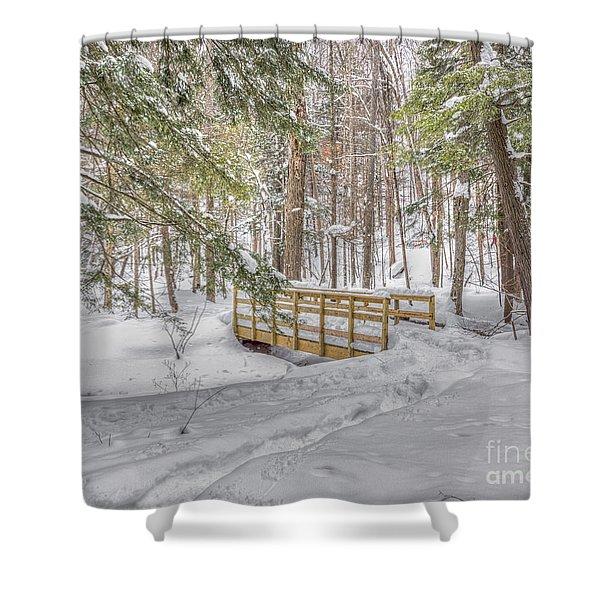Winter Bridge Shower Curtain