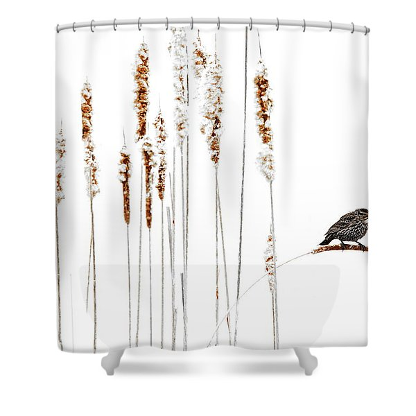 Winter Came Suddenly Shower Curtain