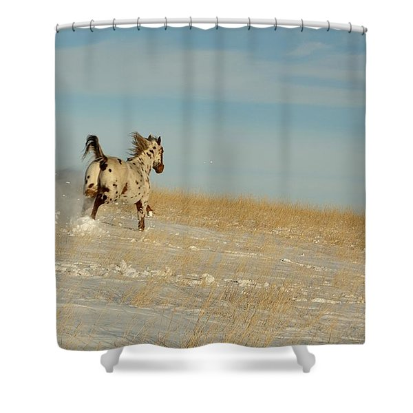 Winter Charger Shower Curtain