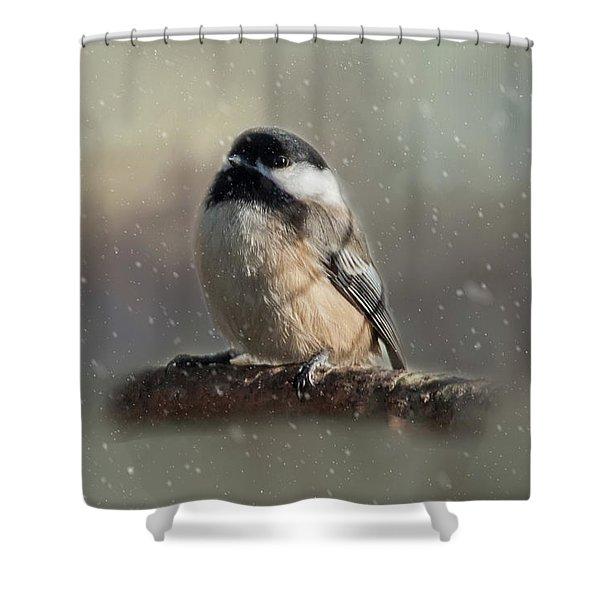 Winter Chicadee Shower Curtain